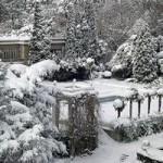 Отдыхаем в Ялте зимой